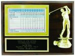 Hole In One Plaque With Golf Standout Economy Plaques