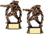 Bronze and Gold Karate Karate Trophy Awards