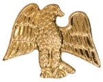 Gold Eagle Metal Chenille Letter Insignia Patriotic Awards