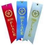 2x8 Place Ribbons Ribbons