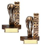 Billboard Series Swimming Swimming Trophy Awards