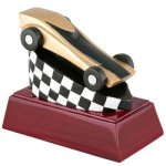 Pinewood Derby Resin Unique Awards