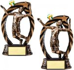 Bronze and Gold Volleyball Volleyball Trophy Awards